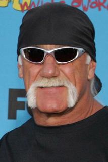 Hulk Hogan photo